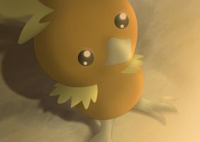 Torchic by All0412