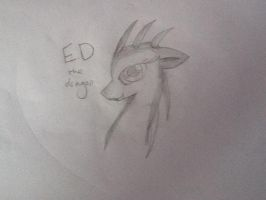 :AT: E.D by mysterydragoness