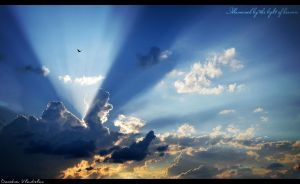 Illumined by the light of heaven... by SPLinTER-OPS