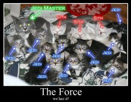 Force Kitties by Voldemorton