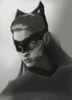 Catwoman portrait by PaulTheDoodlebug