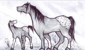 Mare and Foal - envelope by iluvobiwan91