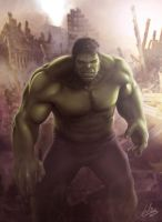 The HULK by MrWills