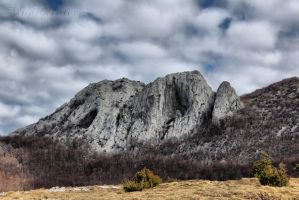 Gray rock by neith13