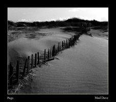 Pegs Monochrome by mad1dave