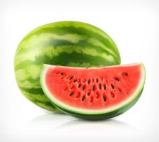 Watermelon Vector by FreeIconsdownload