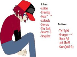 My likes...Dislikes by GothicXPrincess99