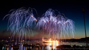 Fireworks reaching out by Shroker