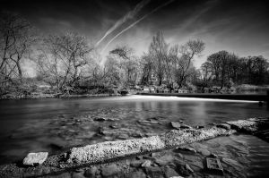 Down by the River by Wayman