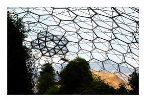 Honeycomb by feisar