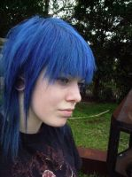 Cut and dyed blue by VanillaBlitz