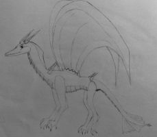 Dragon Sketch by sweetyetsour