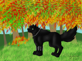 Fall - Contest Entry by Wolven-Sorceress