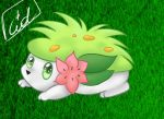 Shaymin by CidsBanana