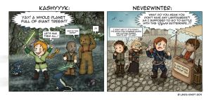 KotOR meets NwN2 by Isriana
