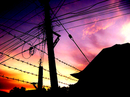 Wired Sunrise by grotesquesilence