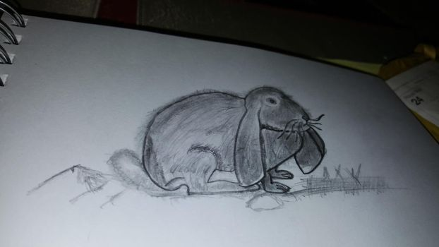 just a little sketch bunny, cleaned up a bit by DraigonSwords