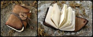 Little Nature Book by Madelei