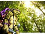 Don in Woods by FireDolphin by tmntart