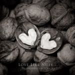 Love like Nuts-02 by SONGJO
