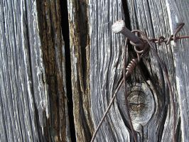 nail in a plank by fosse