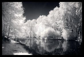 Stillness at the Park by overcoming-silence