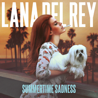 Lana Del Rey - Summertime Sadness by other-covers