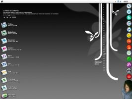Desktop for February '08 by serial-x