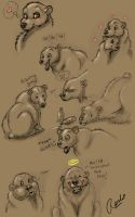 Bear-sketches by fuzzypinkmonster