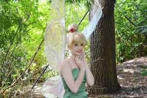 Tinkerbell: Miss Bell by Bearer-Of-Darkness