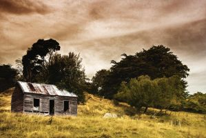 The Shed by cjmchch