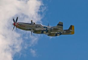 Mustangs Close Formation by davepphotographer