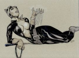 Catwoman 2011 by RadPencils