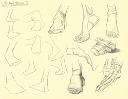Hampton p. 213-214: L/E - Foot Studies II by theThirdCartel