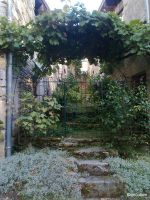 A view through the gate Arcais France by ancoben