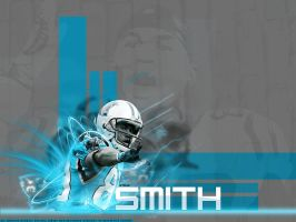 Steve Smith by HGgfx