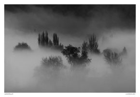Cashmere Mist by Foxtography