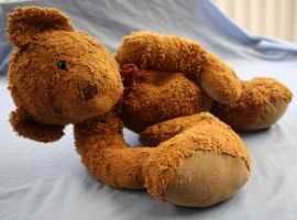 Discarded Bear.8_Mind-Matter by Mind-Matter