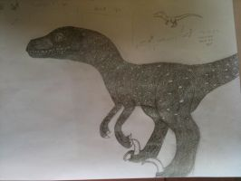 Extremely detailed Raptor O.o by WhiteOrchid14