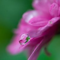 Droplet V by Sonny2005