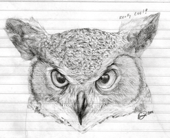 Owl Sketch by Ilovedragons1