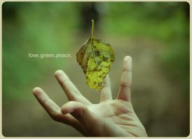 love.green.peace. by moronaromadesign