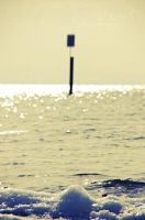 lake constance by seasfairytale