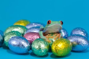 Easter frog 2 by AngiWallace