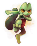 Kung Fu Gecko! by Middroo