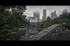 foggy morning - Central Park by Tomoji-ized