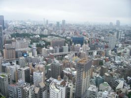 Tokyo by TheWoofster0