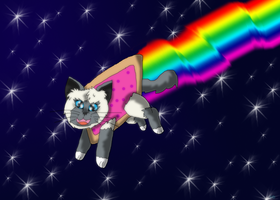 Krystal the Nyan Cat by SuperSonicFireDragon