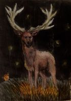 Aceo ~ .:Lights in darkness:. by RainEterni