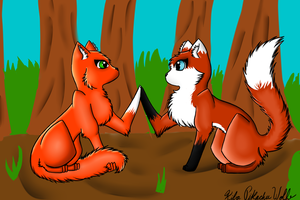 Squirrelflight and Vixenpelt by kawaiikiba
